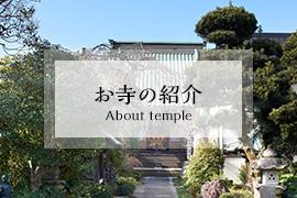 お寺のご紹介